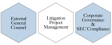 on-demand general counsel, external general counsel, litigation project management, corporate governance and SEC compliance